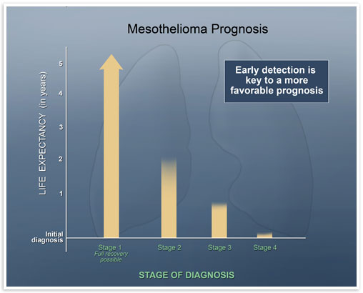 Graphic from mesothelioma.com